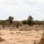 Dry Masai Land in the hills behind KIA Kilimanjaro International Airport