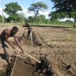 Farmer working on the Rafiki Property